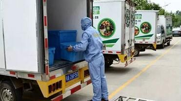 Cold chain monitoring process, what to pay attention?